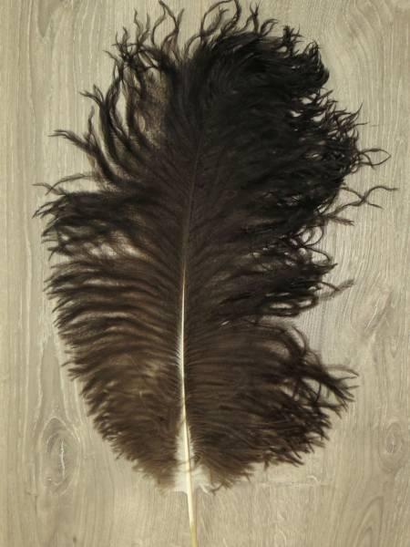 Straußenfeder - groß - natur-dunkel