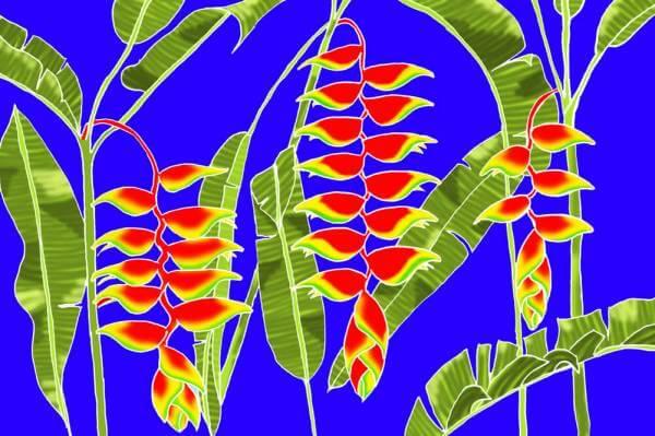 "Hawaii Pareo | Sarong ""Heliconia"" dark blue"