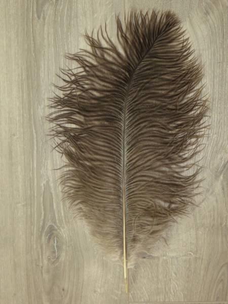 Straußenfeder - groß - natur-hell