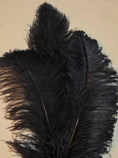 Straußenfeder Luxus - schwarz